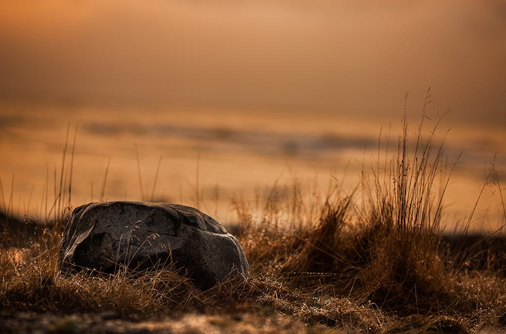 Sea Side Stone